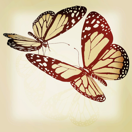 beauty butterflies. 3D illustration. Vintage style.