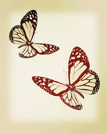 Black and white beautiful butterflys. High quality rendering. 3D illustration. Vintage style.