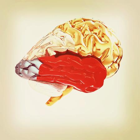 Colorfull human brain. 3D illustration. Vintage style.