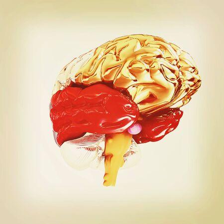 mentality: Colorfull human brain. 3D illustration. Vintage style.