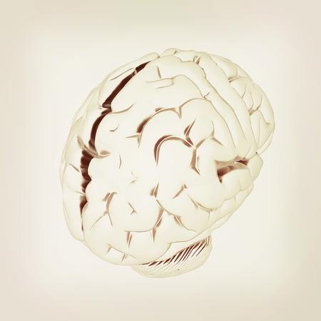 Metall human brain. 3D illustration. Vintage style.
