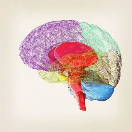 Creative concept of the human brain. 3D illustration. Vintage style.