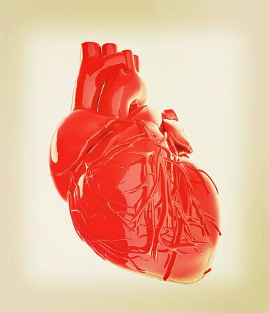 left ventricle: Human heart. 3D illustration. Vintage style.