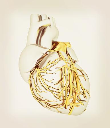Human heart. 3D illustration. Vintage style.