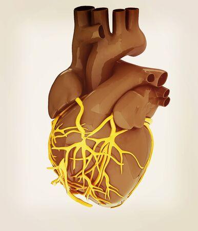 heart 3d: Human heart. 3D illustration. Vintage style.