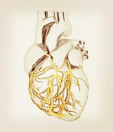 left atrium: Human heart. 3D illustration. Vintage style.