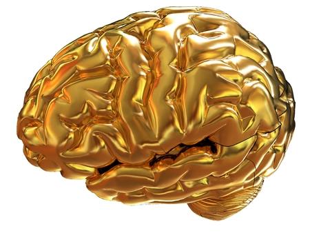 body consciousness: Gold brain. 3d render Stock Photo