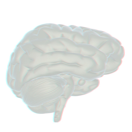 3D illustration of human brain. Anaglyph. View with redcyan glasses to see in 3D. Stock Photo