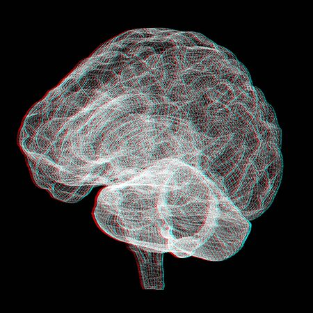 Creative concept of the human brain. Anaglyph. View with redcyan glasses to see in 3D. Stock Photo