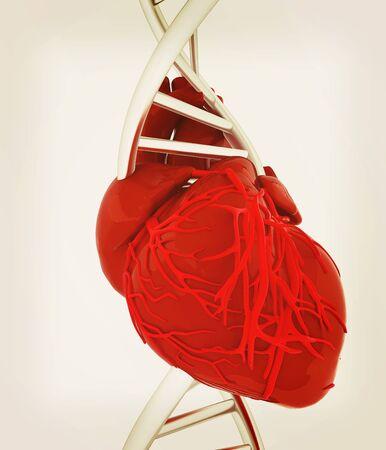 vascular: DNA and heart. 3d illustration