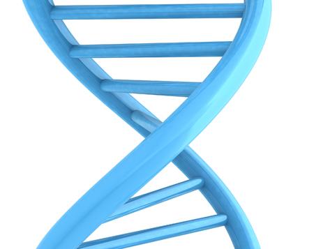 DNA structure model on white. 3D illustration