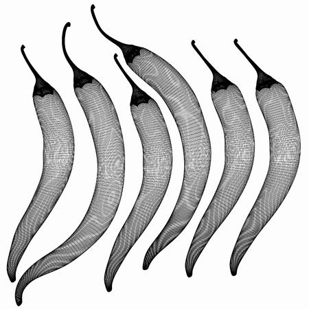 capsaicin: chili pepper. 3d illustration