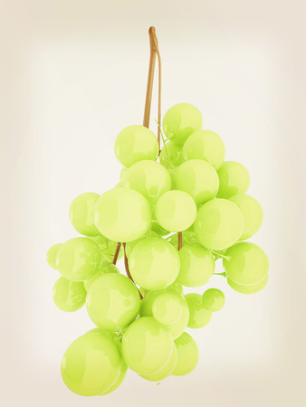 article icon: Healthy fruits Green wine grapes isolated white background. Bunch of grapes ready to eat. 3d illustration. Vintage style