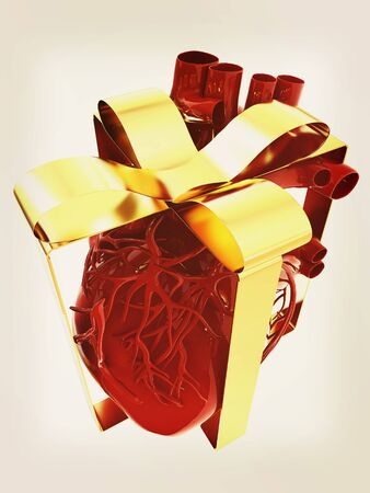 Red human heart with ribbon. Donor concept. 3d illustration. Vintage style
