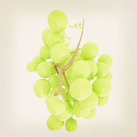 Healthy fruits Green wine grapes isolated white background. Bunch of grapes ready to eat. 3d illustration. Vintage style