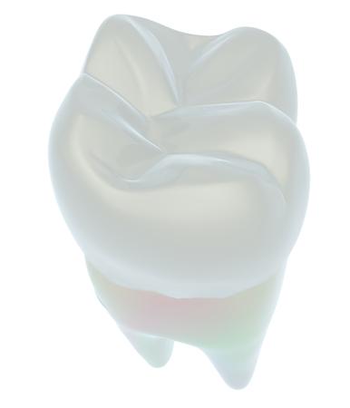 Tooth. 3d illustration