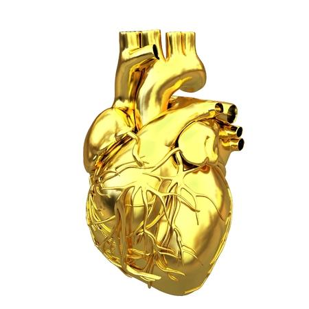 Golden anatomical heart. 3d render Stok Fotoğraf
