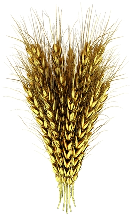 Golden spikelet. 3d render
