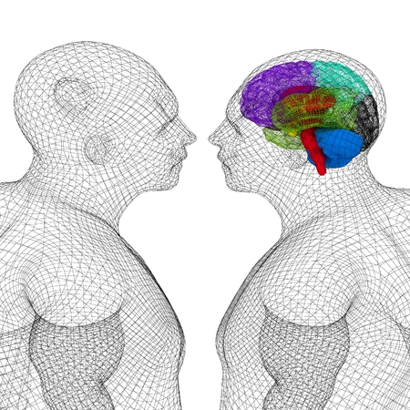 Wire Human Model With Brain And A Of Person Without