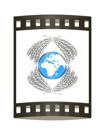 Wheat ears logo design with Earth. 3d render. Film strip.