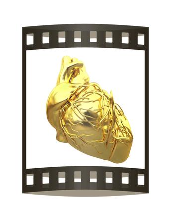 Golden anatomical heart. 3d render. Film strip.
