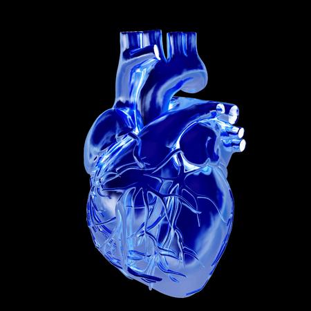 Golden anatomical heart. 3d render. On a black background.