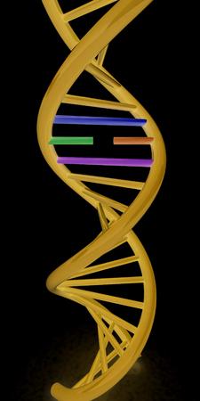 DNA structure model on white. 3d illustration. On a black background.