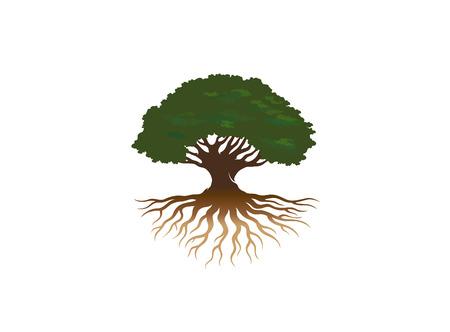 Creative Tree Roots Logo