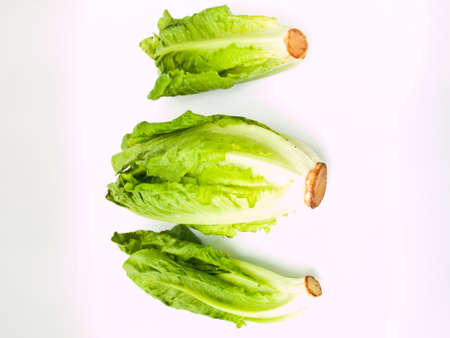 Fresh cos salad isolated on white background photo