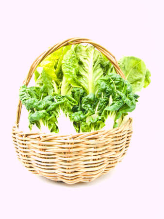 Fresh  baby bok choy and cos salad in ratten basket isolated on white background photo