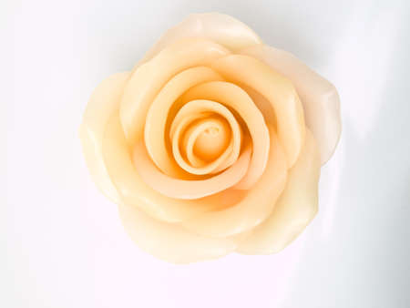A pink rose candle isolated on white background