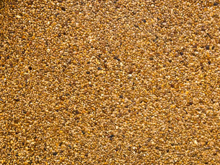 Texture of washed gravel as background photo