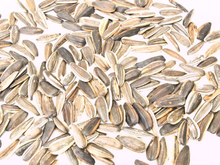 Sunflower seeds isolated on white background as background