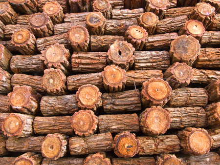fire wood background texture  closeup of chopped fire wood stack photo