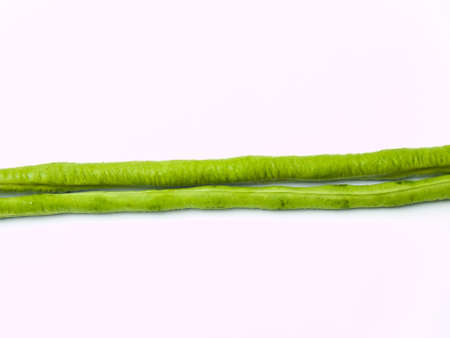 Yardlong bean, Vigna unguiculata subsp  sesquipedalis, isolated on white background photo