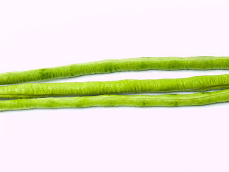 Yardlong bean, Vigna unguiculata subsp. sesquipedalis, isolated on white background Stock Photo - 17884714