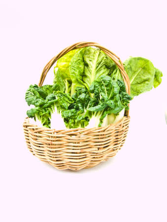 Fresh  baby bok choy and cos salad in ratten basket isolated on white background Stock Photo - 17879755