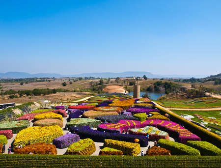 Beautiful garden of colorful flowers in summer on blue sky - Thailand photo