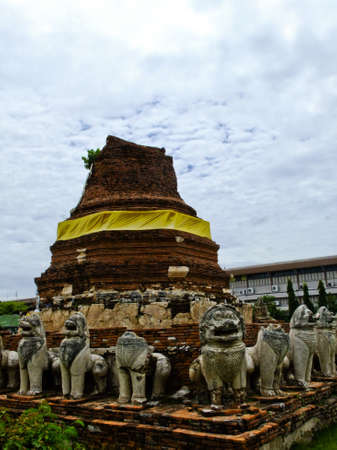 An ancient buddhist pagoda with elephant stone statues in Ayutthaya in Thailand photo