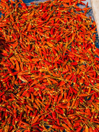 red dried chilli in sunlight