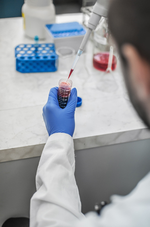 Scientist filling test tubes with pipette in laboratory. Close up