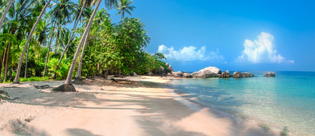 Beautiful tropical beach at exotic island with palm trees. Nature background