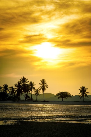 Silhouetted coconut palm trees on the beach at sunset time. Summer vacation in Thailand Standard-Bild - 109846699