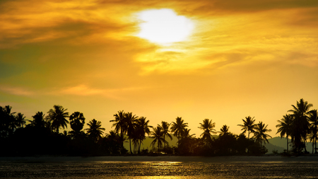 Silhouetted coconut palm trees on the beach at sunset time. Summer vacation in Thailand Standard-Bild - 109846700