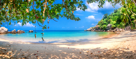 Idyllic tropical beach, palm, white sand and crystal clear water. Amazing beach. Landscape for background or wallpaper. Koh Tao, Thailand