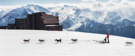 Husky sled winter dogs pull sleds sleigh through the snow in beautiful landscape of the Alps mountain range. Winter Scenic in the French Alps