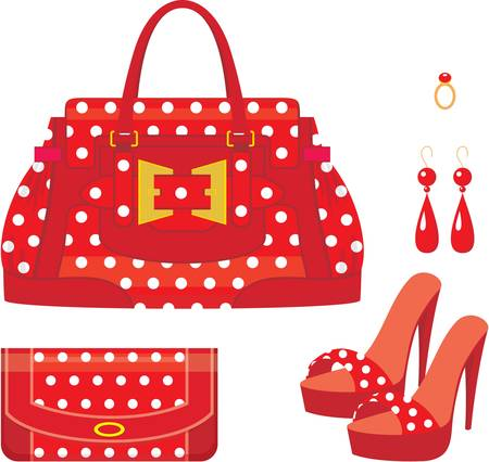 Female bag, purse and shoes on a heel. Vector