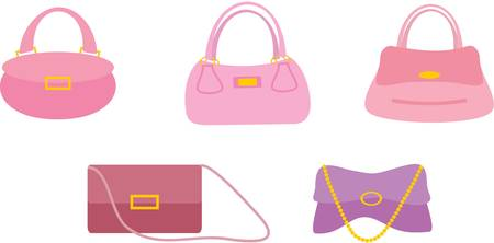 Bags female on a white Vector