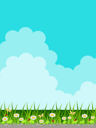 fields  grass: Vector background with grass and sky