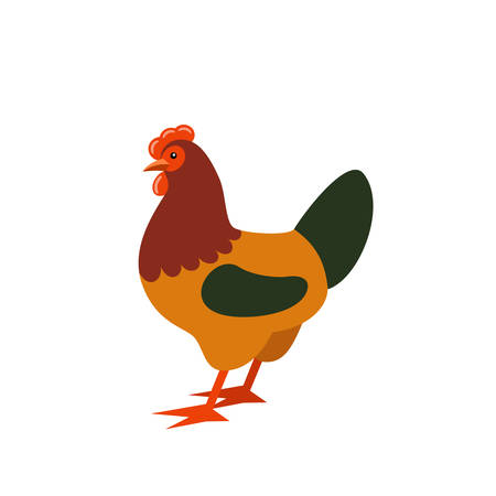 Cartoon rooster. Farmer isolated animal. Vector Illustration